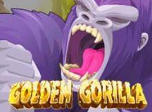 golden gorilla online slots