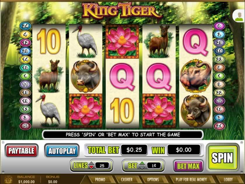 king tiger screen