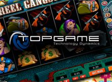 TopGame software provider