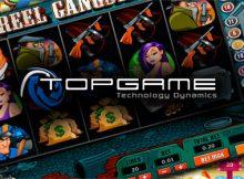 TopGame software provider