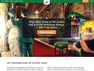 Mr Green Casino PC