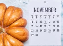 a calendar showing November with a pumpkin close by for the Slots Play Casinos promos